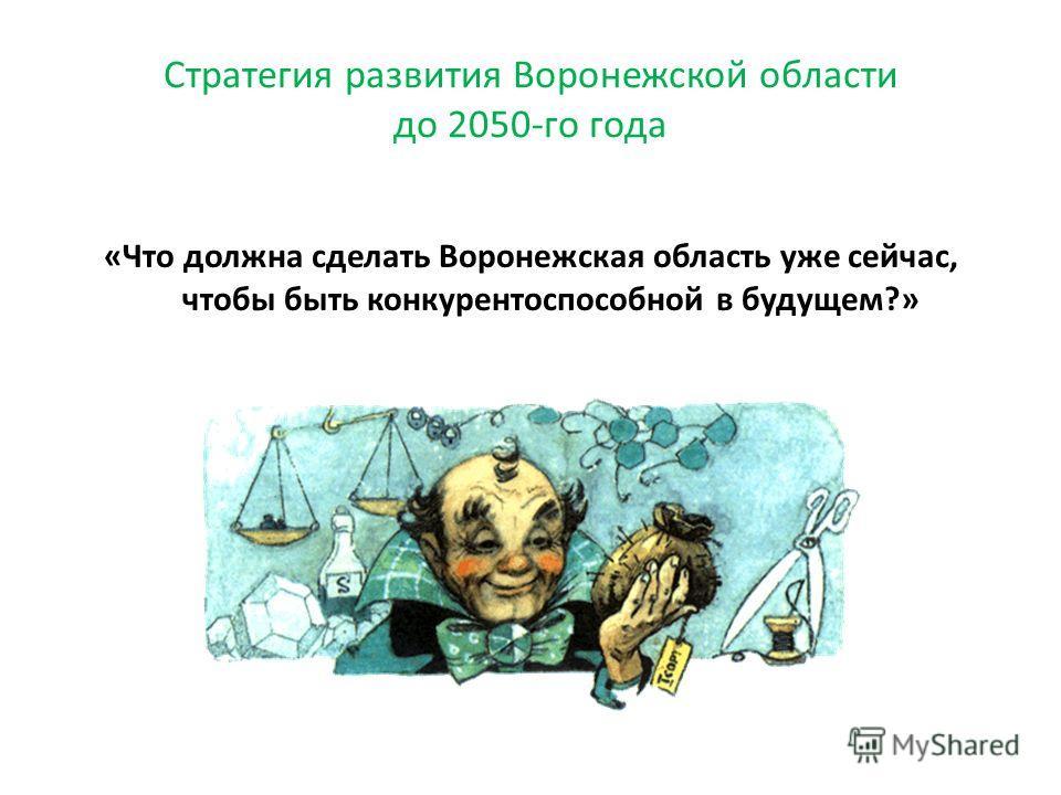 «Что должна сделать Воронежская область уже сейчас, чтобы быть конкурентоспособной в будущем?» Стратегия развития Воронежской области до 2050-го года