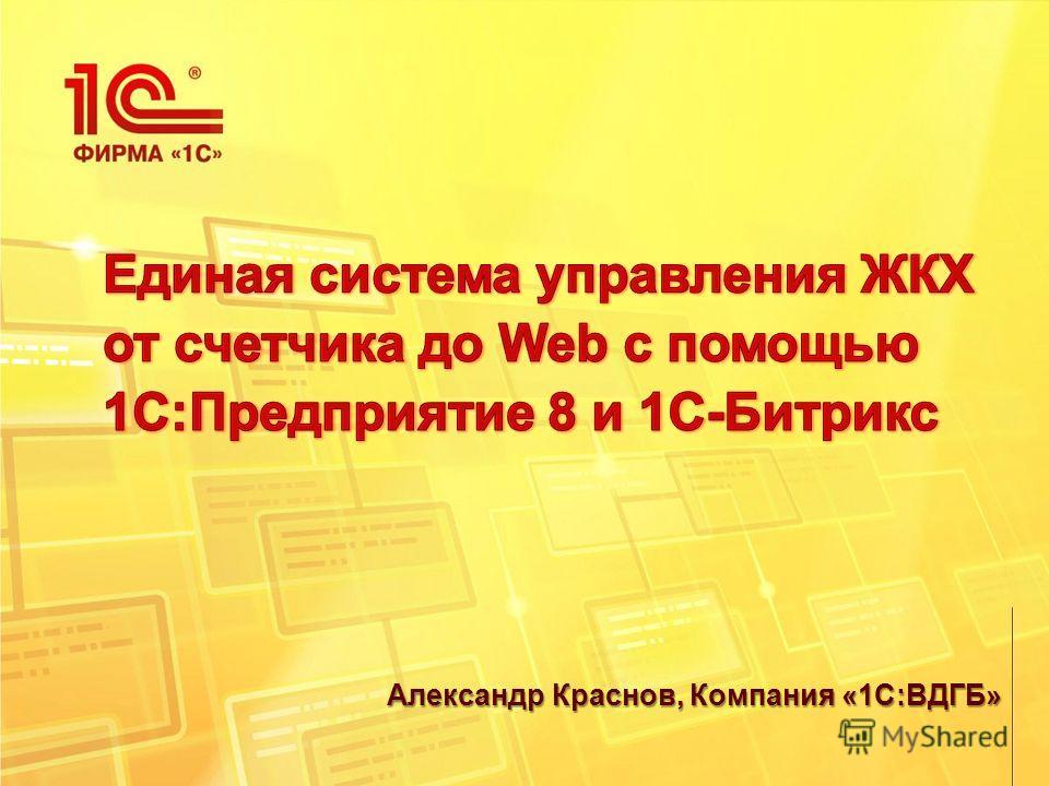 Александр Краснов, Компания «1С:ВДГБ»