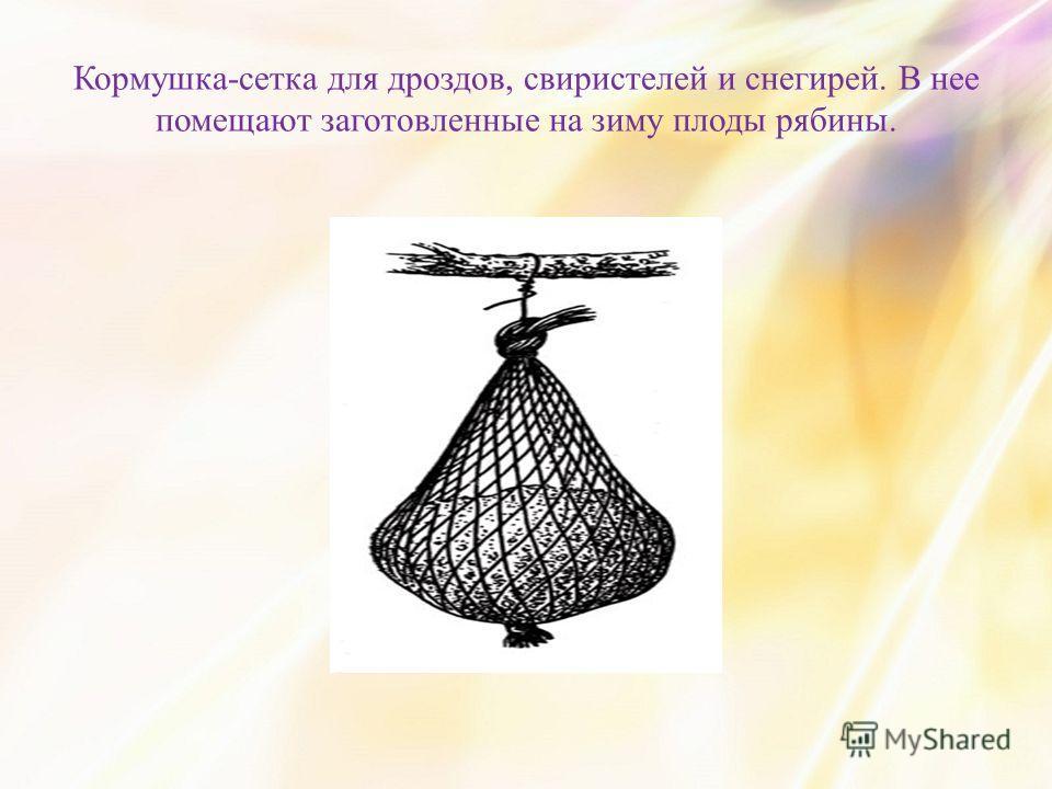 Кормушка-сетка для дроздов, свиристелей и снегирей. В нее помещают заготовленные на зиму плоды рябины.
