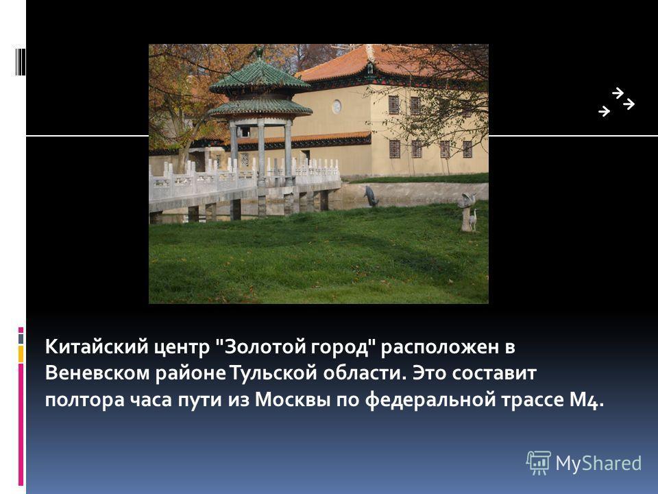 Китайский центр Золотой город расположен в Веневском районе Тульской области. Это составит полтора часа пути из Москвы по федеральной трассе M4.