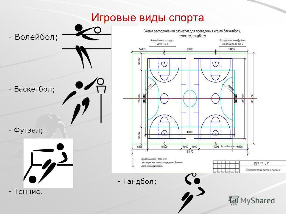 Игровые виды спорта - Волейбол; - Баскетбол; - Футзал; - Гандбол; - Теннис.