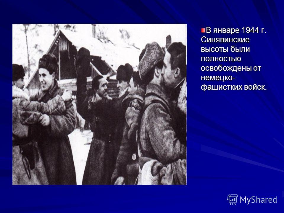 В январе 1944 г. Синявинские высоты были полностью освобождены от немецко- фашистких войск.