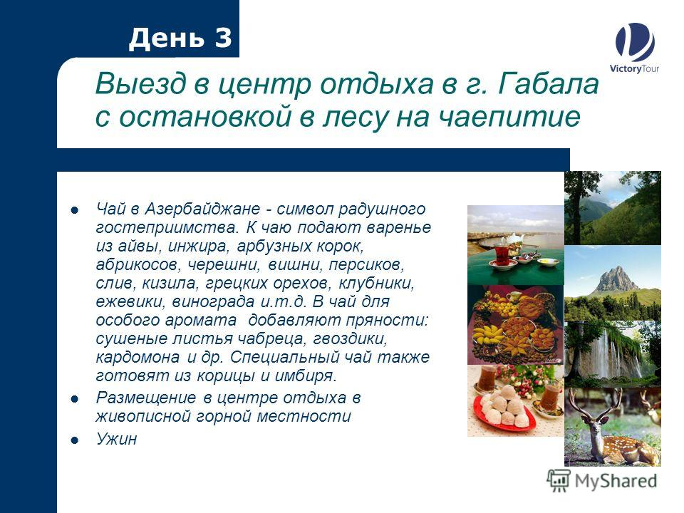 Выезд в центр отдыха в г. Габала с остановкой в лесу на чаепитие Чай в Азербайджане - символ радушного гостеприимства. К чаю подают варенье из айвы, инжира, арбузных корок, абрикосов, черешни, вишни, персиков, слив, кизила, грецких орехов, клубники,