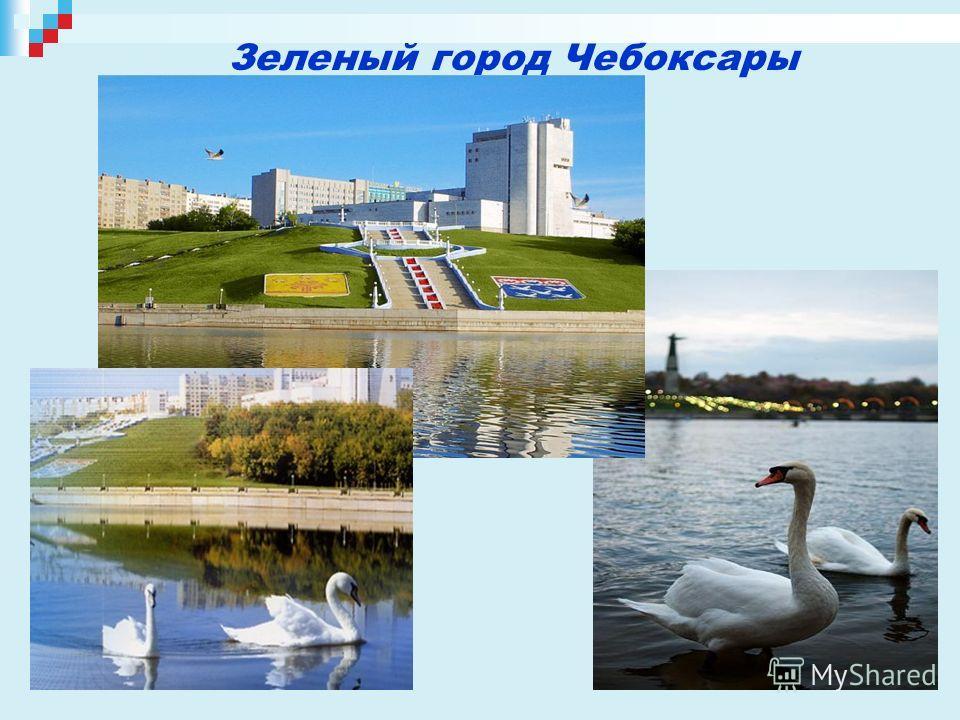 Зеленый город Чебоксары