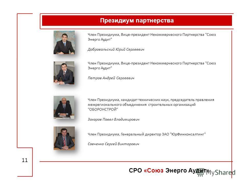 Президиум партнерства 11 СРО «Союз Энерго Аудит» Член Президиума, Вице-президент Некоммерческого Партнерства
