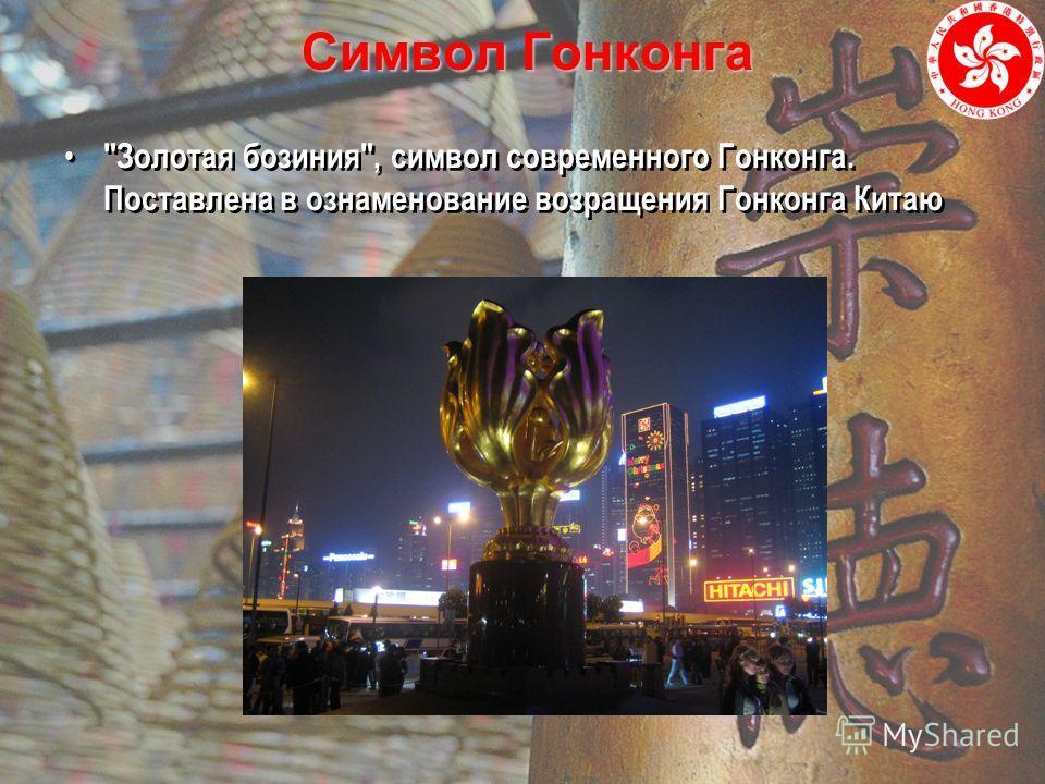Символ Гонконга Золотая бозиния, символ современного Гонконга. Поставлена в ознаменование возращения Гонконга Китаю
