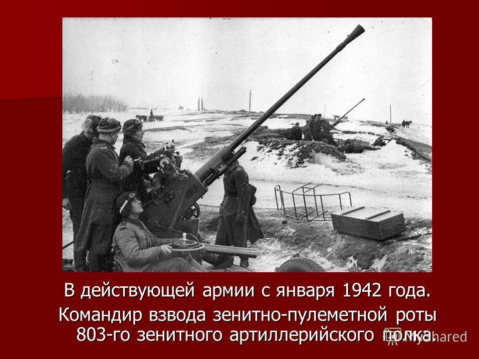 В действующей армии с января 1942 года. Командир взвода зенитно-пулеметной роты 803-го зенитного артиллерийского полка.