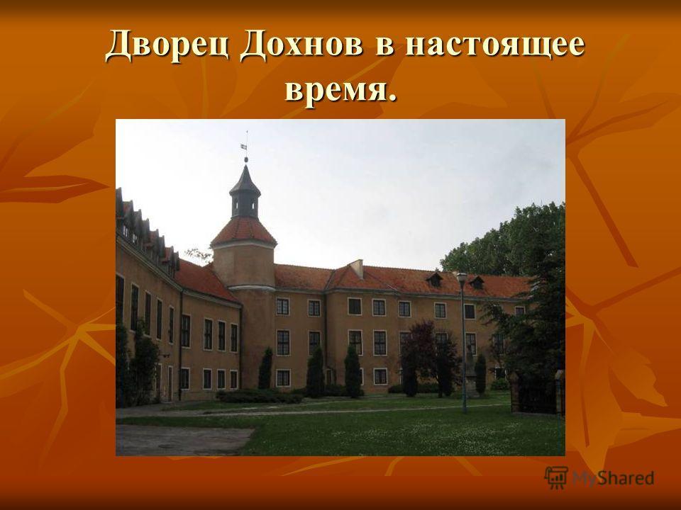 Дворец Дохнов в настоящее время. Дворец Дохнов в настоящее время.