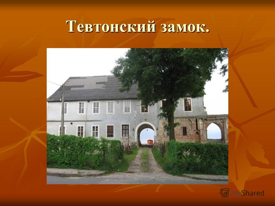 Тевтонский замок.