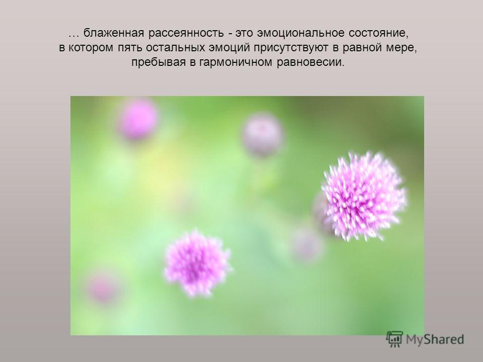 … блаженная рассеянность - это эмоциональное состояние, в котором пять остальных эмоций присутствуют в равной мере, пребывая в гармоничном равновесии.