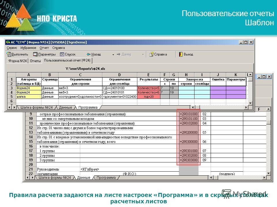 Пользовательские отчеты Шаблон Правила расчета задаются на листе настроек «Программа» и в скрытых столбцах расчетных листов