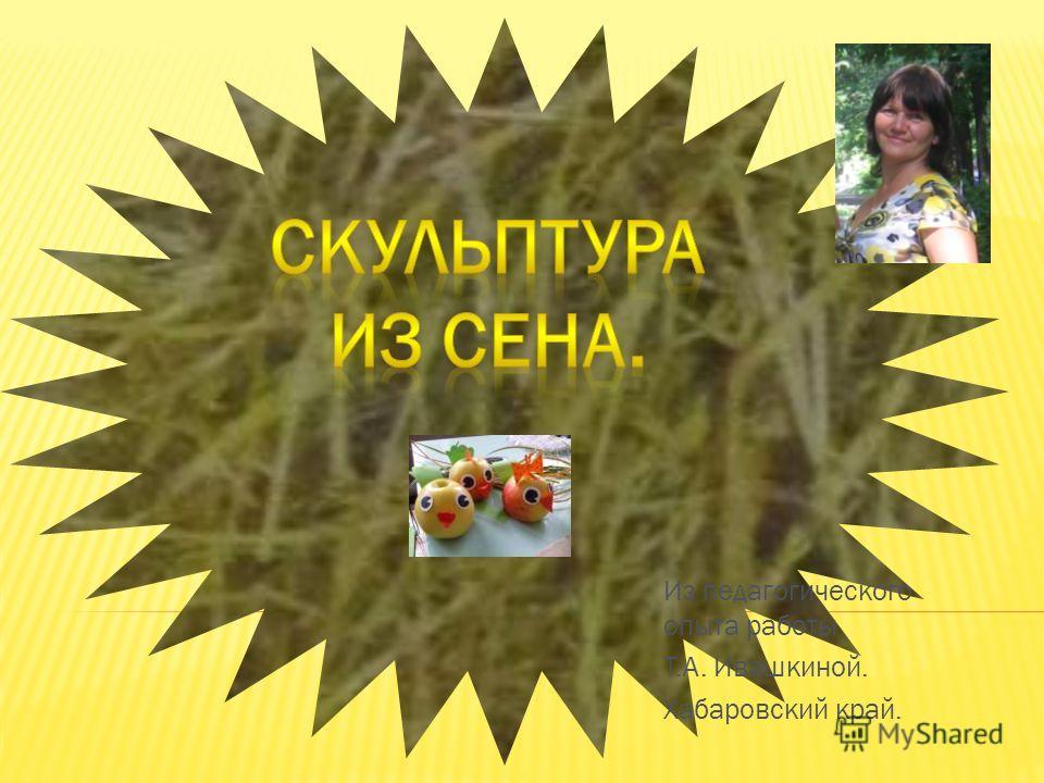 Из педагогического опыта работы Т.А. Ивашкиной. Хабаровский край.