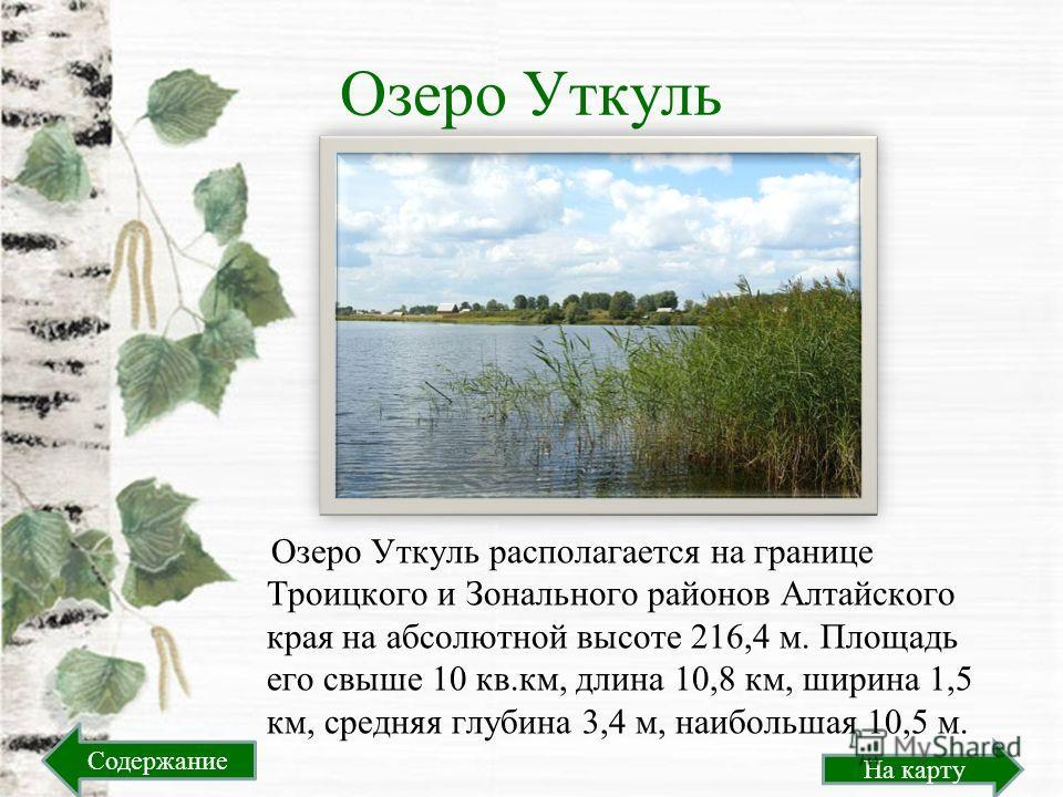 Озеро Уткуль Озеро Уткуль располагается на границе Троицкого и Зонального районов Алтайского края на абсолютной высоте 216,4 м. Площадь его свыше 10 кв.км, длина 10,8 км, ширина 1,5 км, средняя глубина 3,4 м, наибольшая 10,5 м. На карту Содержание
