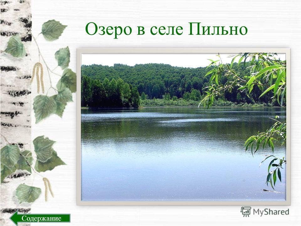 Озеро в селе Пильно Содержание
