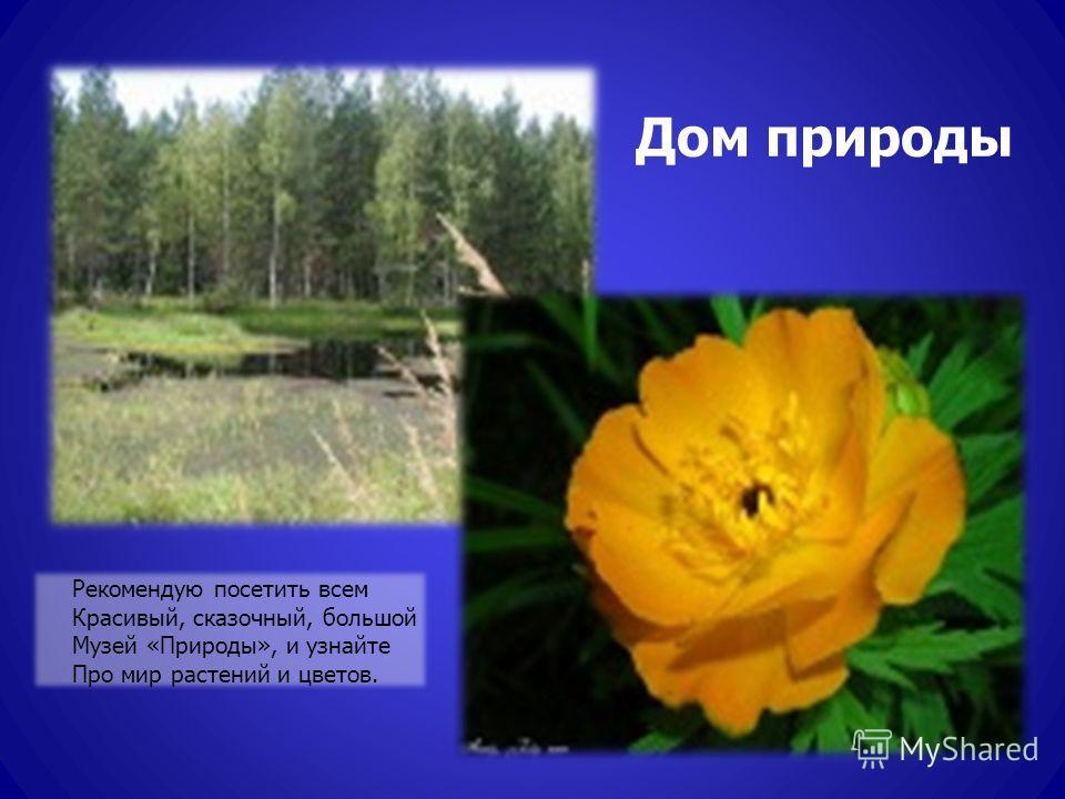 Дом природы Рекомендую посетить всем Красивый, сказочный, большой Музей «Природы», и узнайте Про мир растений и цветов.