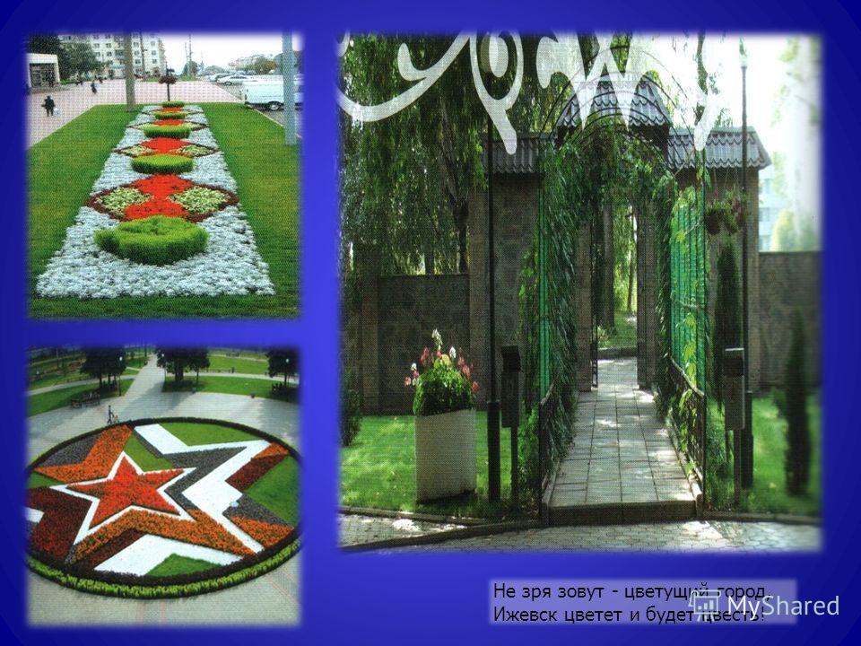 Не зря зовут - цветущий город, Ижевск цветет и будет цвесть!