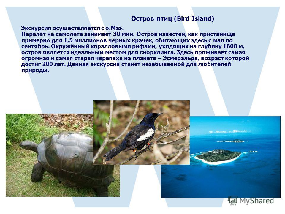 Остров птиц (Bird Island) Экскурсия осуществляется с о.Маэ. Перелёт на самолёте занимает 30 мин. Остров известен, как пристанище примерно для 1,5 миллионов черных крачек, обитающих здесь с мая по сентябрь. Окружённый коралловыми рифами, уходящих на г