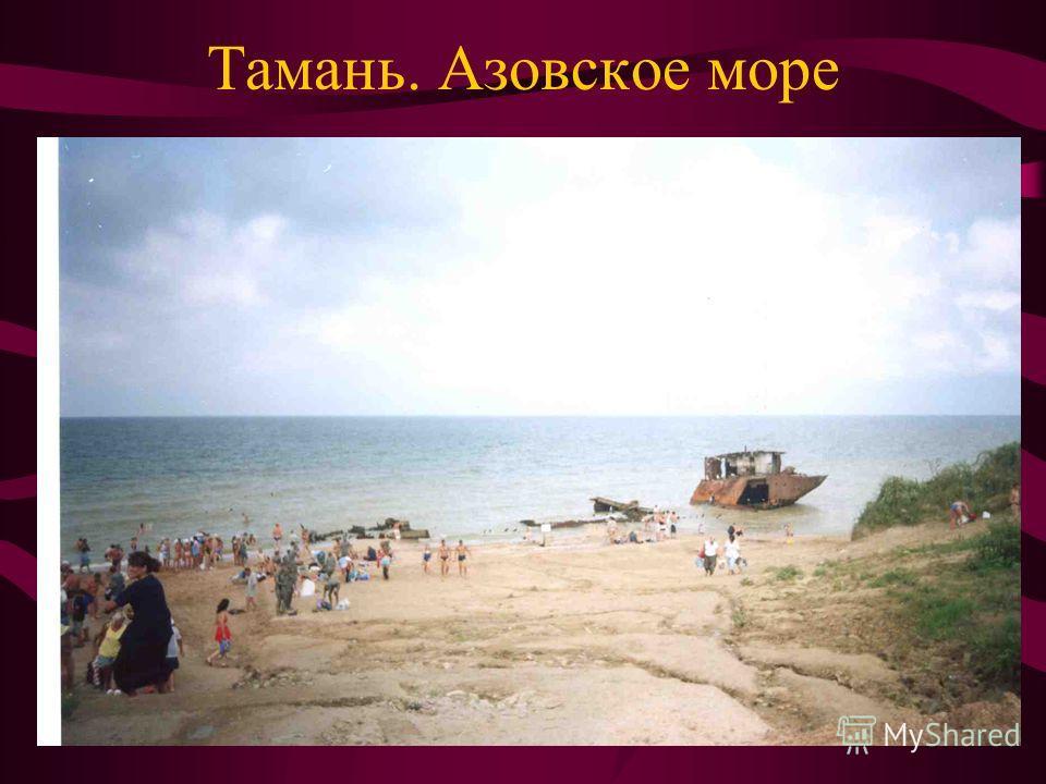 Тамань. Азовское море