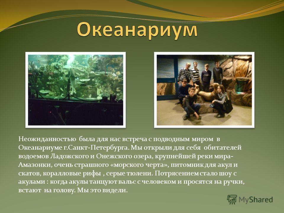 Неожиданностью была для нас встреча с подводным миром в Океанариуме г.Санкт-Петербурга. Мы открыли для себя обитателей водоемов Ладожского и Онежского озера, крупнейшей реки мира- Амазонки, очень страшного «морского черта», питомник для акул и скатов