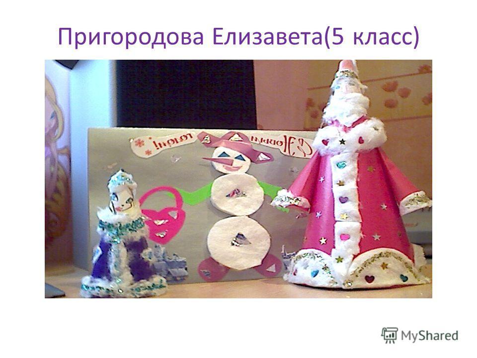 Пригородова Елизавета(5 класс)