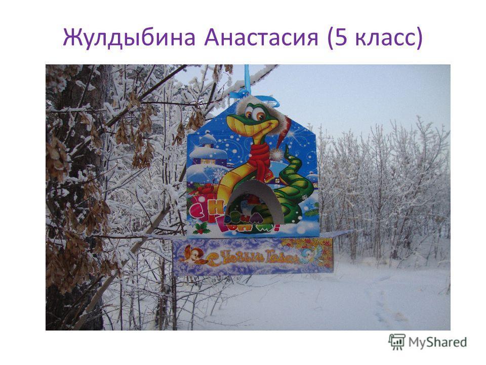 Жулдыбина Анастасия (5 класс)