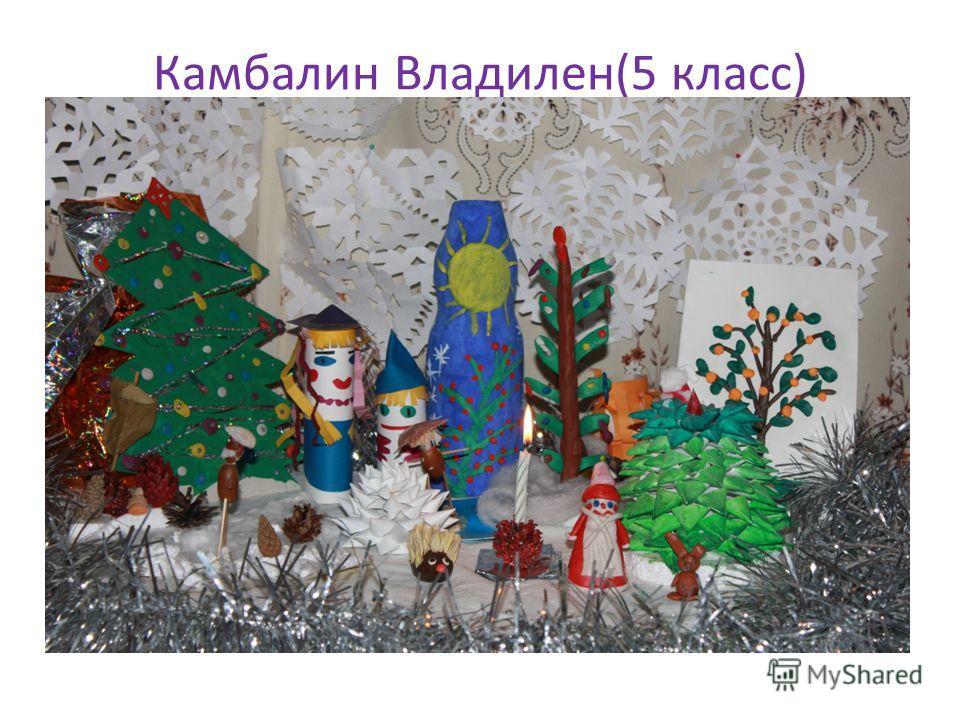Камбалин Владилен(5 класс)