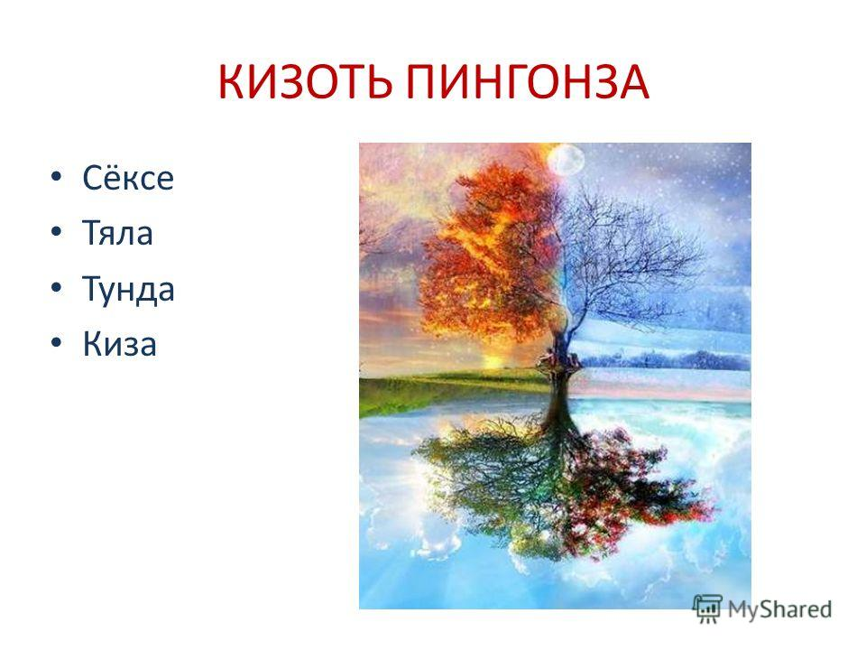 КИЗОТЬ ПИНГОНЗА Сёксе Тяла Тунда Киза