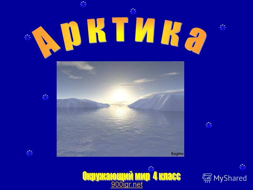 Арктика. 900igr.net