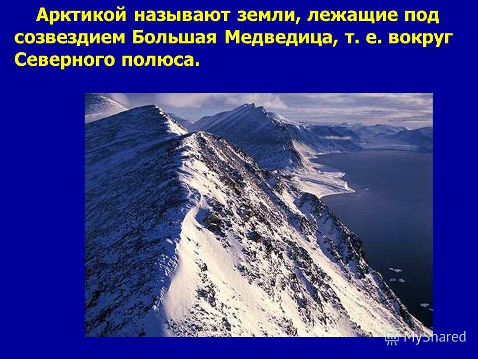 Арктикой называют земли, лежащие под созвездием Большая Медведица, т. е. вокруг Северного полюса. Арктикой называют земли, лежащие под созвездием большая медведица, т. Е. Вокруг северного полюса.
