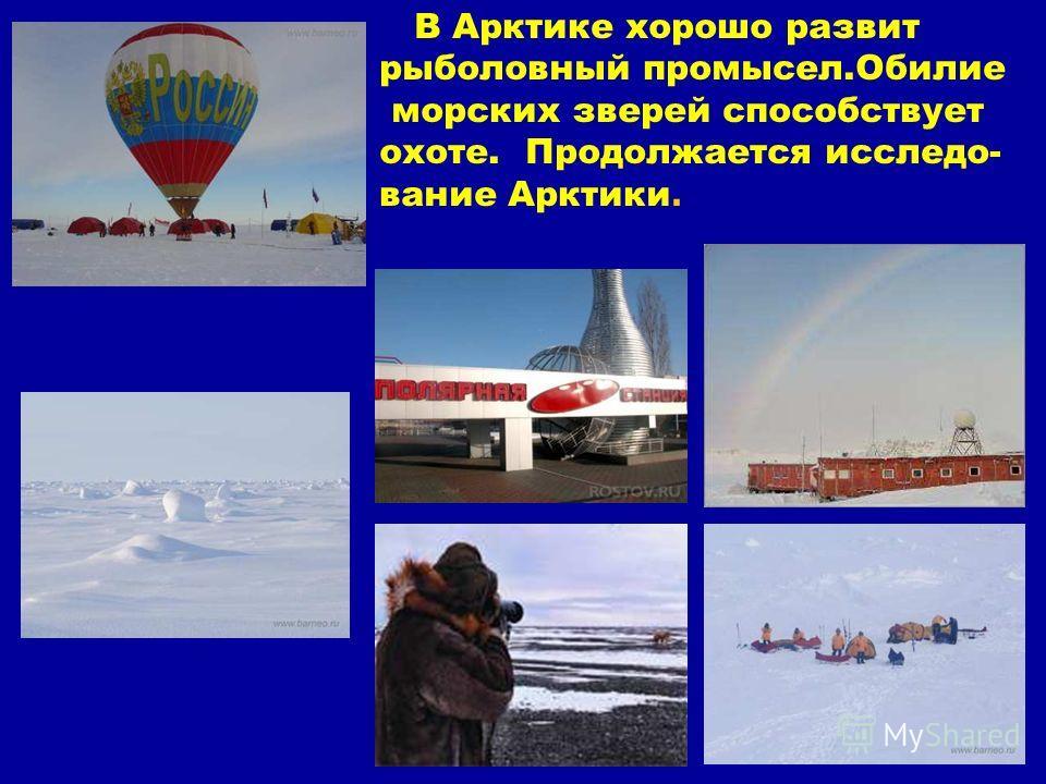 В Арктике хорошо развит рыболовный промысел.Обилие морских зверей способствует охоте. Продолжается исследо- вание Арктики. В арктике хорошо развит рыболовный промысел.Обилие морских зверей способствует охоте. Продолжается исследо- вание арктики.