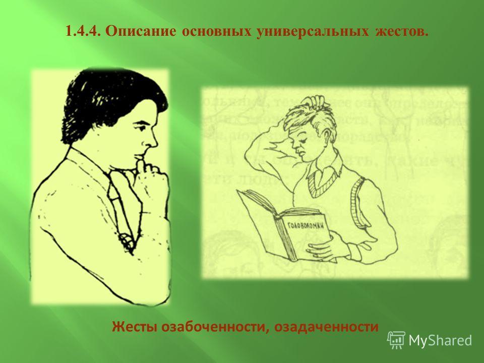 1.4.4. Описание основных универсальных жестов. Жесты озабоченности, озадаченности
