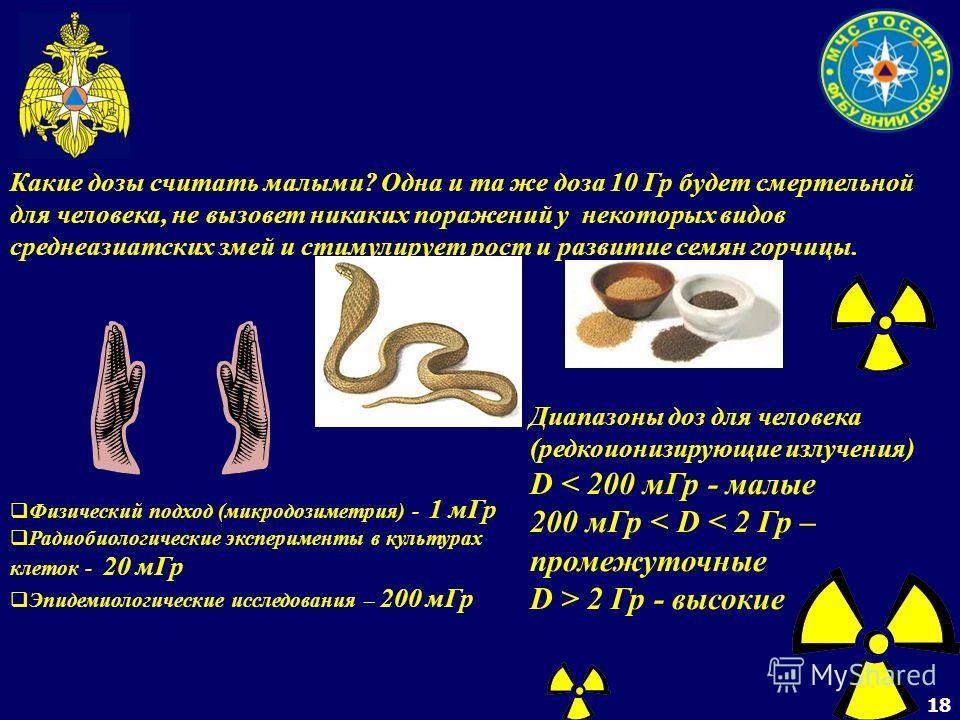 18 Какие дозы считать малыми? Одна и та же доза 10 Гр будет смертельной для человека, не вызовет никаких поражений у некоторых видов среднеазиатских змей и стимулирует рост и развитие семян горчицы. Физический подход (микродозиметрия) - 1 мГр Радиоби