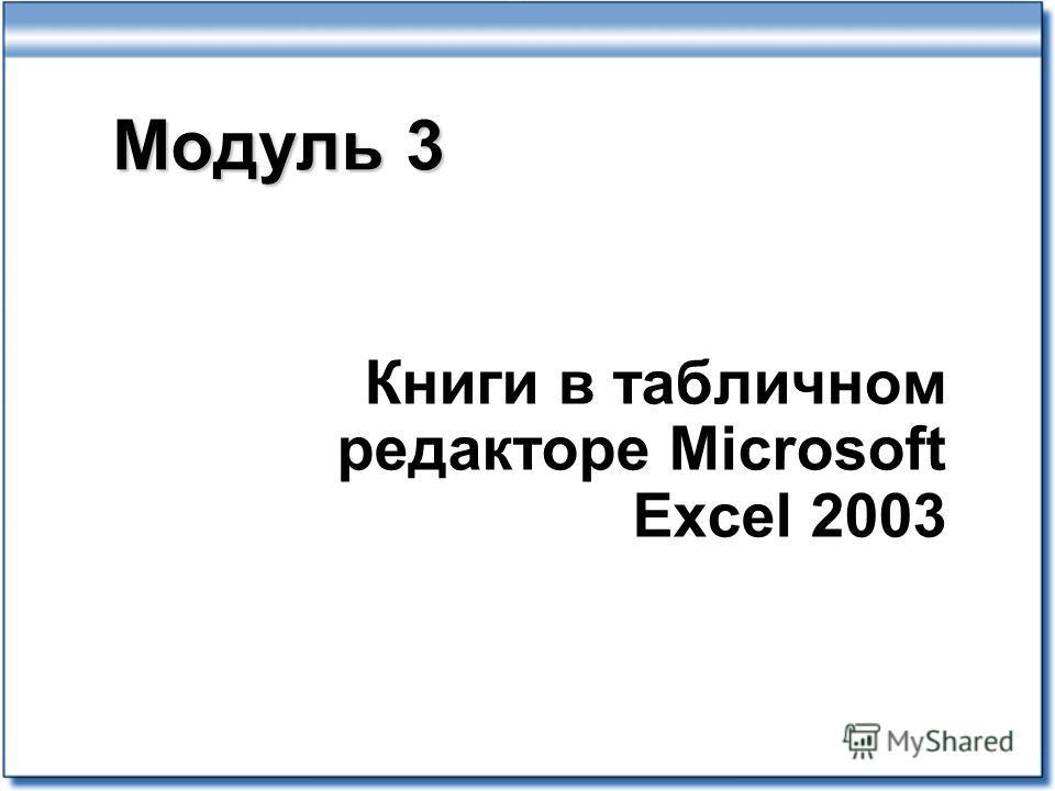 Модуль 3 Книги в табличном редакторе Microsoft Excel 2003