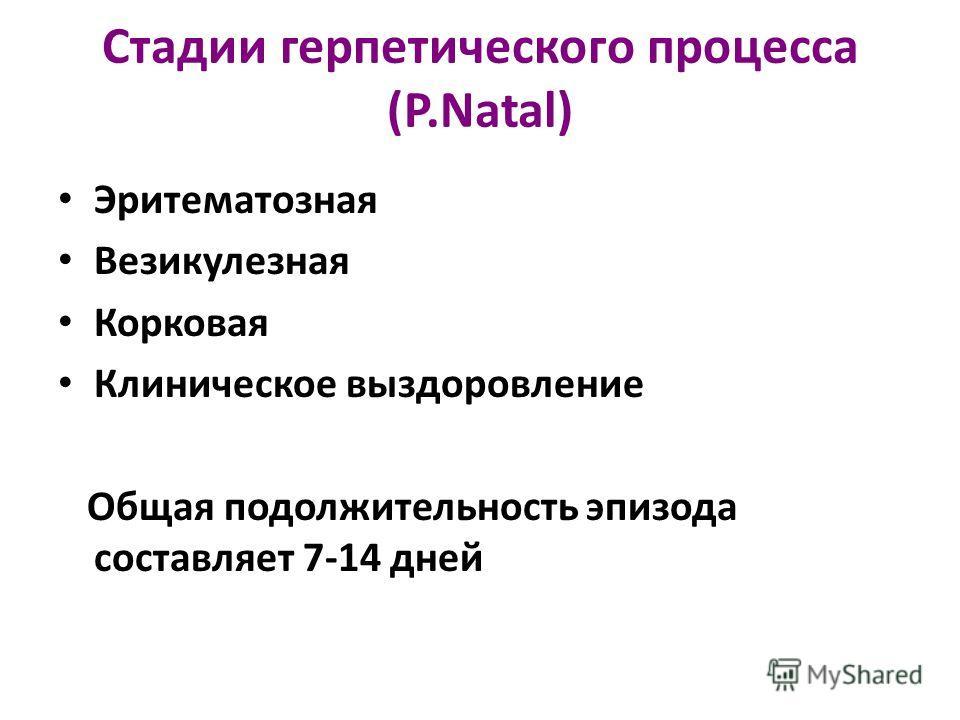Стадии герпетического процесса (P.Natal) Эритематозная Везикулезная Корковая Клиническое выздоровление Общая подолжительность эпизода составляет 7-14 дней