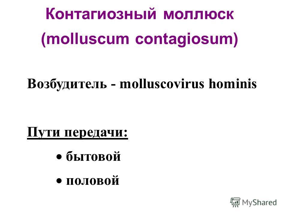 Контагиозный моллюск (molluscum contagiosum) Возбудитель - molluscovirus hominis Пути передачи: бытовой половой