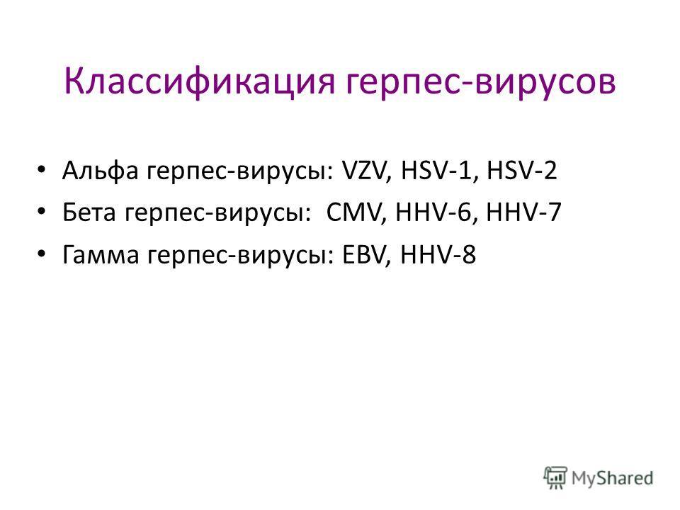 Классификация герпес-вирусов Альфа герпес-вирусы: VZV, HSV-1, HSV-2 Бета герпес-вирусы: CMV, HHV-6, HHV-7 Гамма герпес-вирусы: EBV, HHV-8