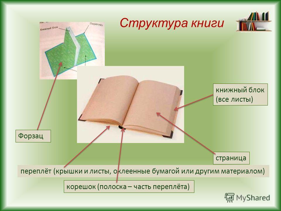 Структура книги переплёт (крышки и листы, оклеенные бумагой или другим материалом) Форзац корешок (полоска – часть переплёта) страница книжный блок (все листы)