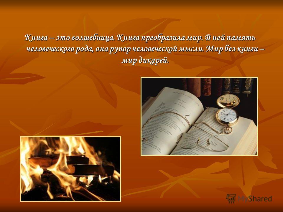 Книга – это волшебница. Книга преобразила мир. В ней память человеческого рода, она рупор человеческой мысли. Мир без книги – мир дикарей.