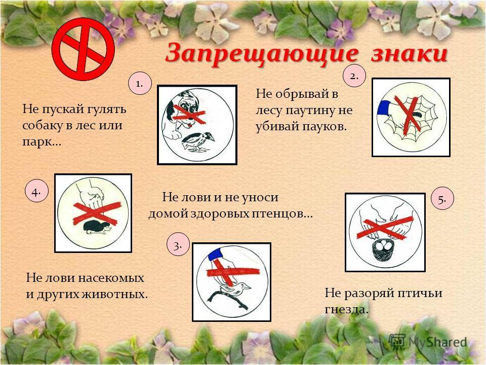 Запрещающие знаки Не обрывай в лесу паутину не убивай пауков. Не разоряй птичьи гнезда. Не лови и не уноси домой здоровых птенцов… Не лови насекомых и других животных. Не пускай гулять собаку в лес или парк… 1. 2. 3. 4. 5.