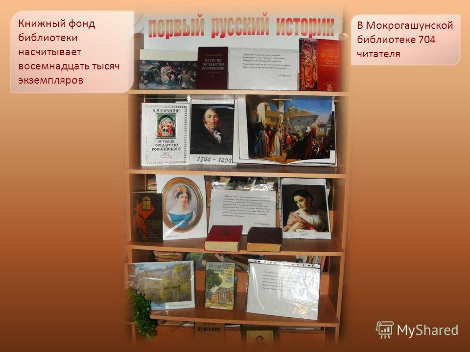 Книжный фонд библиотеки насчитывает восемнадцать тысяч экземпляров В Мокрогашунской библиотеке 704 читателя