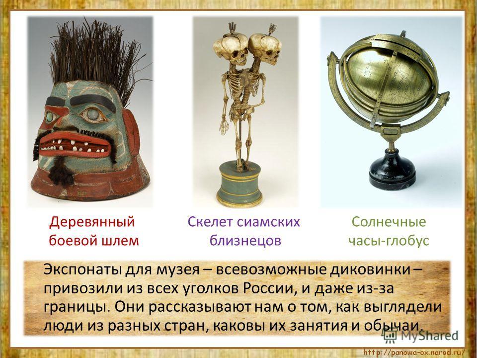 Экспонаты для музея – всевозможные диковинки – привозили из всех уголков России, и даже из-за границы. Они рассказывают нам о том, как выглядели люди из разных стран, каковы их занятия и обычаи. Деревянный боевой шлем Солнечные часы-глобус Скелет сиа