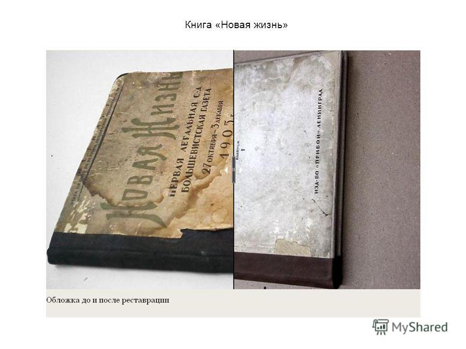 Книга «Новая жизнь»