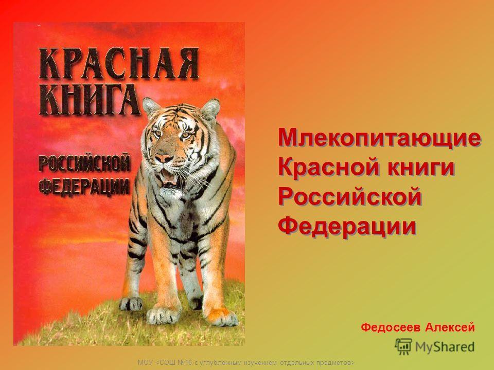 МОУ Млекопитающие Красной книги Российской Федерации Млекопитающие Красной книги Российской Федерации Федосеев Алексей