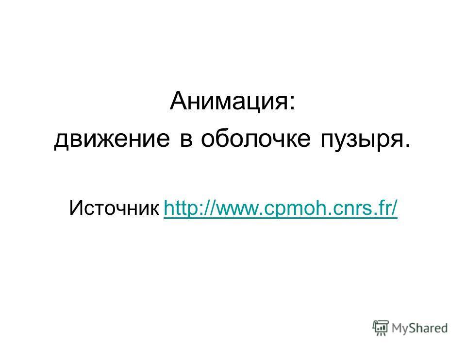 Анимация: движение в оболочке пузыря. Источник http://www.cpmoh.cnrs.fr/http://www.cpmoh.cnrs.fr/