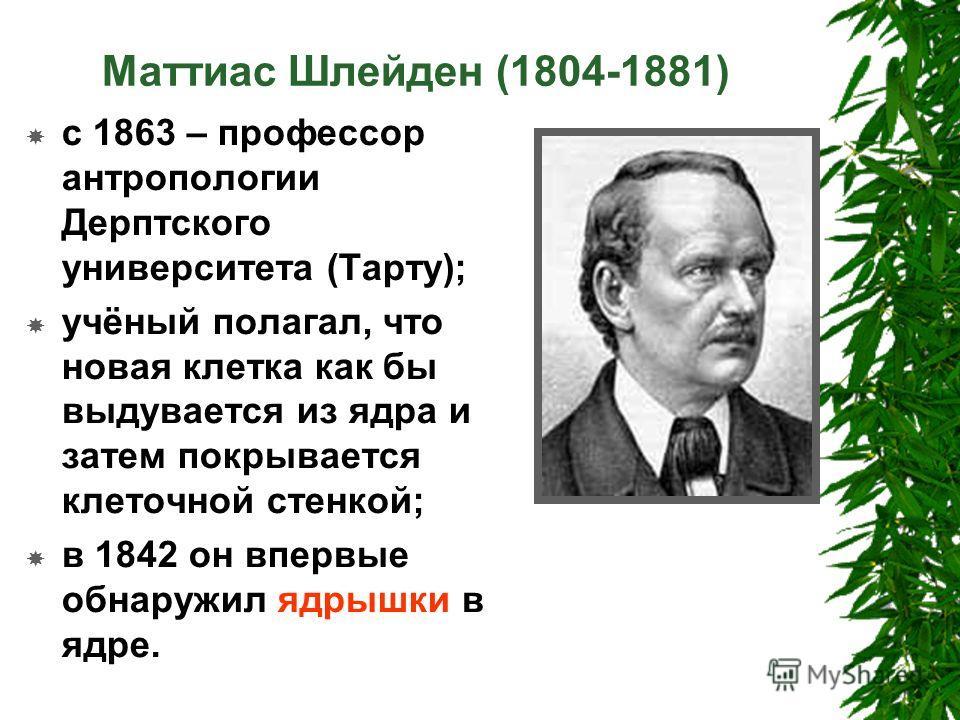Маттиас Шлейден (1804-1881) с 1863 – профессор антропологии Дерптского университета (Тарту); учёный полагал, что новая клетка как бы выдувается из ядра и затем покрывается клеточной стенкой; в 1842 он впервые обнаружил ядрышки в ядре.