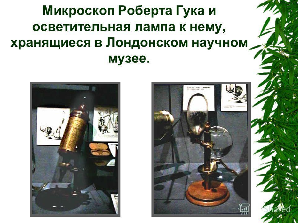 Микроскоп Роберта Гука и осветительная лампа к нему, хранящиеся в Лондонском научном музее.
