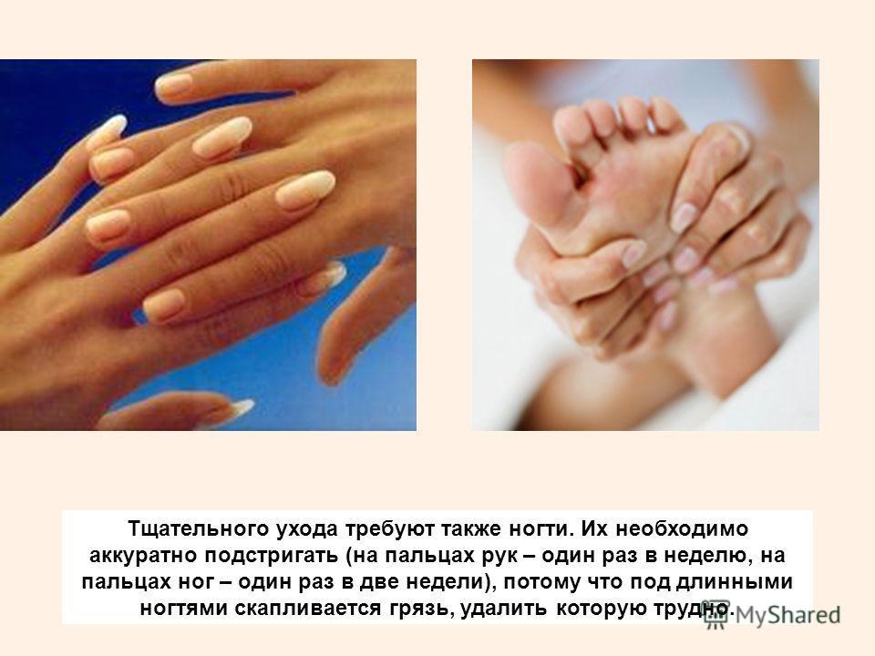 Тщательного ухода требуют также ногти. Их необходимо аккуратно подстригать (на пальцах рук – один раз в неделю, на пальцах ног – один раз в две недели), потому что под длинными ногтями скапливается грязь, удалить которую трудно.