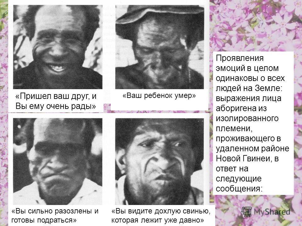 Проявления эмоций в целом одинаковы о всех людей на Земле: выражения лица аборигена из изолированного племени, проживающего в удаленном районе Новой Гвинеи, в ответ на следующие сообщения: «Ваш ребенок умер» «Пришел ваш друг, и Вы ему очень рады» «Вы