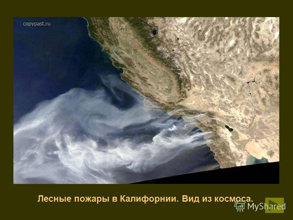 Лесные пожары в Калифорнии. Вид из космоса.