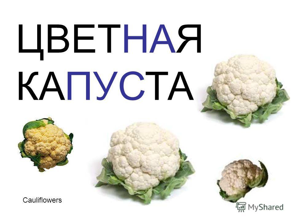 Cauliflowers ЦВЕТНАЯ КАПУСТА Cauliflowers цветная капуста